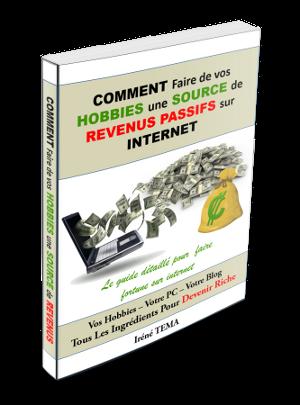 COMMENT Faire de vos HOBBIES une SOURCE de REVENUS PASSIFS sur INTERNET - Le guide détaillé pour faire fortune sur internet à partir d'un blog!
